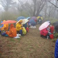 ④ 東郷山(ブログ未発表の名峰) : 東郷山山頂 昼食風景  UP2日目最終章