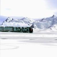 雪原のSL&ピピちんの野ション