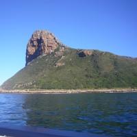 「東南アフリカ」編 アザラシの島・ドイカー島1