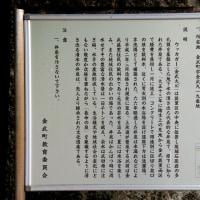 金武大川に行って来ました。