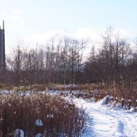 大雪(たいせつ)の日は真冬日