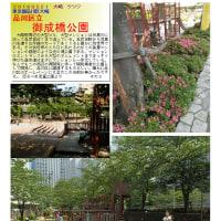 散策 「東京中心部南 249」 御成橋公園