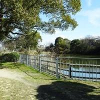 家原大池公園付近