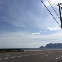 観光客でいっぱいの函館市内-啄木公園   写真の不思議