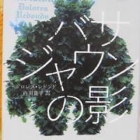 推理小説「バサジャウンの影」を終える!