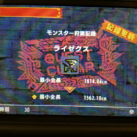 2016/11/25 MHX 狩猟日誌 HR254→255