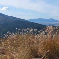 矢倉沢から矢倉岳、洒水の滝、河村城跡へ