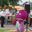 大阪府羽曳野市駒ヶ谷の収穫祭 ( 2017.7.23 (日) )