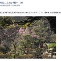 10年前に行っていた京王百草園 (2)