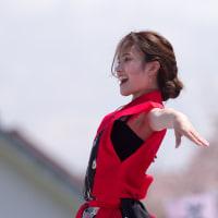 篠山よさこいまつり2017 弥華美