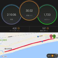 今年も30km走、少しがんばる