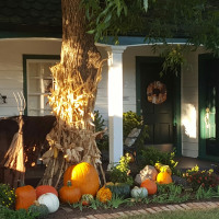 かぼちゃのデコレーションのお洒落な近所の家