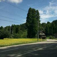 青バス200号に乗って(18)