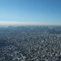 1月の東京スカイツリー:フロア350より南西~西方向(東京駅~新宿駅)