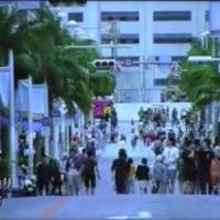 沖縄に脈々と受け継がれている、カメジローの『不屈』の精神