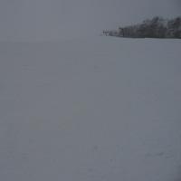 スキー 2016/12/15