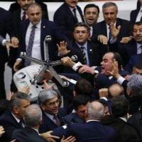 まったりひつじ飼い家と、大忙しトルコ国会