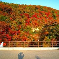 秋田の美しい紅葉シーズン