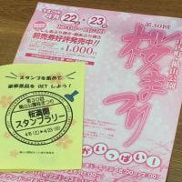 楯山公園開花状況 2016.04.12