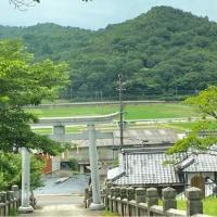 天満神社(あじさい神社)☆