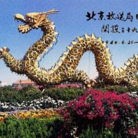 北京放送 ベリカード (5)  80年代