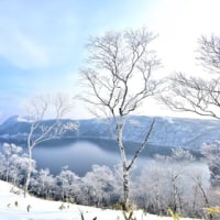 摩周湖・・樹氷の花咲く。