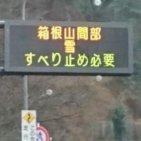 静岡でいちご狩り