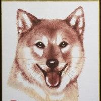 「柴犬」 剪画(切絵)  小色紙(210x180㎜)