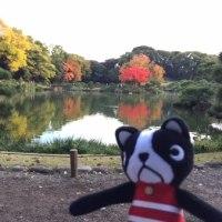 清澄庭園でプチ紅葉狩り