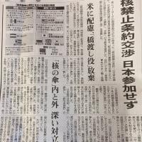 核兵器禁止条約交渉  広島の被爆者が演説 (NHK NEWS WEB)