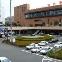 JR仙台駅西口のモチノキ(黐の木) 2016年12月10日(土)