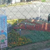 お花がお出迎え@羽村駅東口ロータリー