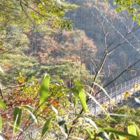 水上 白水の滝吊り橋