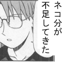 【松来未祐強化月間】ポン太(可愛い)とチー(可愛い)