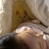 眠りの環境