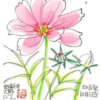 10月1日 西新井大師にて