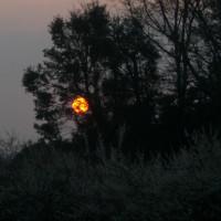 月の出です
