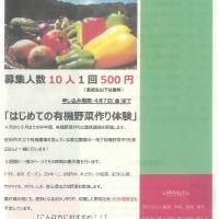 はじめての有機野菜作り体験 参加者募集!