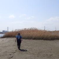 京浜運河へ