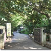 早稲田大学、大隈庭園と学食に行ってきました~