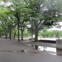 名古屋は久々の雨