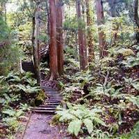 十和田神社にまつわる・・・・・十和田火山3・・・