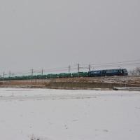 1月15日撮影 東線貨物 2080レと・・