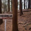 道標左0120  千種塚跡  是ヨリ