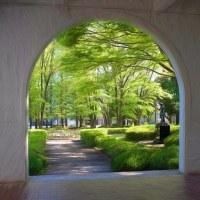 207.04.28 北区十条台1 中央公園文化センター: アーチの向こうの緑