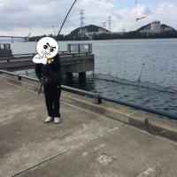 不漁~大漁の1週間