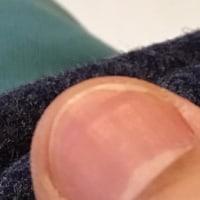 爪は一日に、0.1ミリ