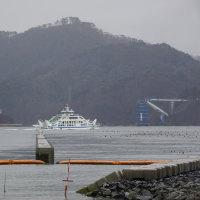 『気仙沼大島大橋』の架設