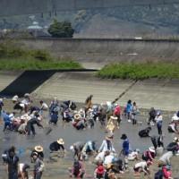 春のシジミ貝掘り☞松橋砂川