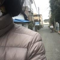 3月23日、べっぴんさんイイねぇ〜❣️